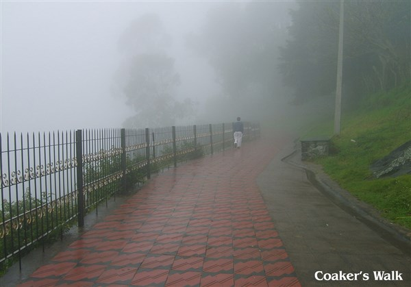 Munnar & Kodaikanal 4 Days All Inclusive Tour Package from Coimbatore to Coimbatore.