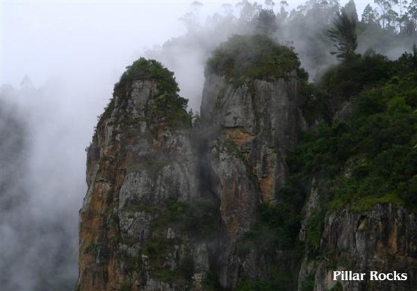 Kodaikanal 2-Days Sightseeing Tour from Arni to Arni.