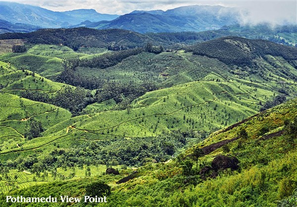 Pothamedu View Point, Munnar - Karthi Travels | Ranipet - Munnar & Thekkady Tour