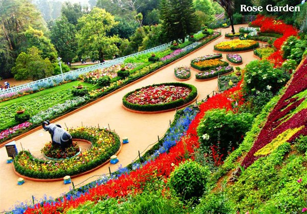 Ooty 2-Days  Tour from Arni to Arni.