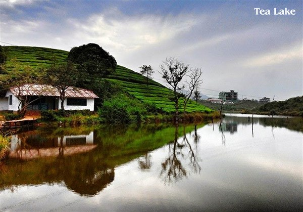 Tea Lake & Boating, Vagamon - Karthi Travels | Ambur - Vagamon Tour