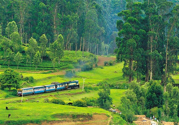 Ooty 2  day tour from Vellore