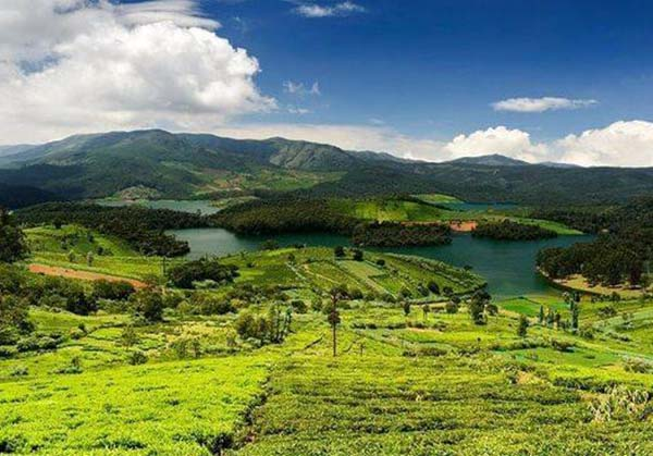 Ooty 3  day tour from Vellore